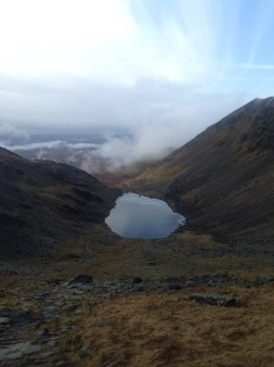 Goats water from the top of Coniston Old Man